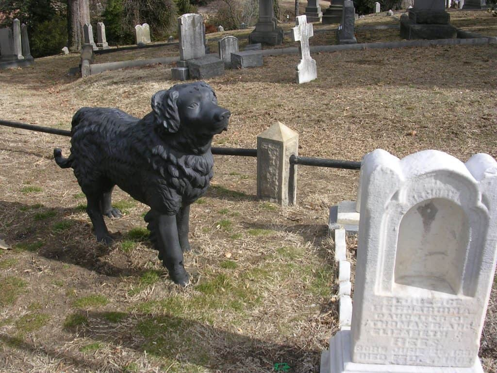 iron dog at hollywood